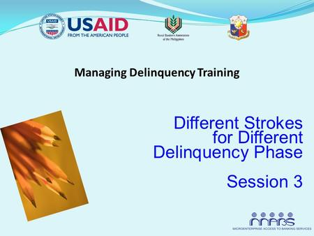 Managing Delinquency Training Different Strokes for Different Delinquency Phase Session 3.