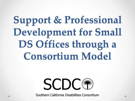 Support & Professional Development for Small DS Offices through a Consortium Model.