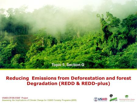 USAID-CIFOR-ICRAF Project Assessing the Implications of Climate Change for USAID Forestry Programs (2009) Reducing Emissions from Deforestation and forest.