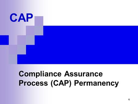 Compliance Assurance Process (CAP) Permanency