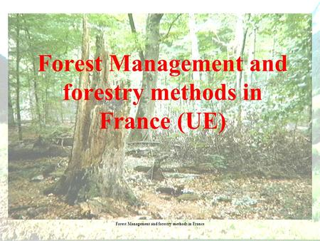 Forest Management and forestry methods in France Forest Management and forestry methods in France (UE)