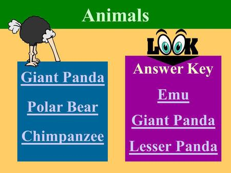 Animals Giant Panda Polar Bear Chimpanzee Answer Key Emu Giant Panda Lesser Panda.
