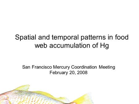 Spatial and temporal patterns in food web accumulation of Hg San Francisco Mercury Coordination Meeting February 20, 2008.