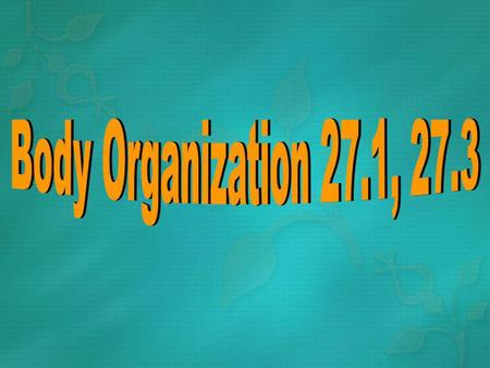 5 Levels of Organization- 1) The body-2) Organ systems-