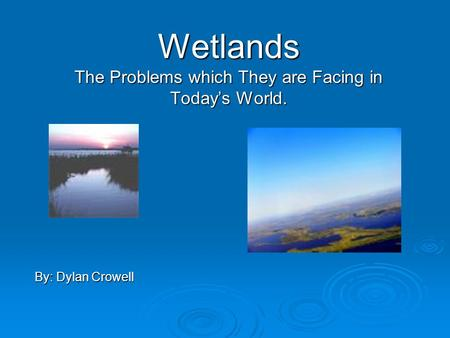 Wetlands The Problems which They are Facing in Today's World. By: Dylan Crowell.