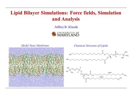 Lipid Bilayer Simulations: Force fields, Simulation and Analysis Jeffery B. Klauda Model Yeast Membrane Chemical Structure of Lipids.