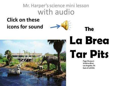 Page Museum Wilshire Blvd, Los Angeles, CA East of LACMA The La Brea Tar Pits Mr. Harper's science mini lesson with audio Click on these icons for sound.