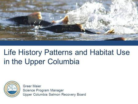 Life History Patterns and Habitat Use in the Upper Columbia Greer Maier Science Program Manager Upper Columbia Salmon Recovery Board.