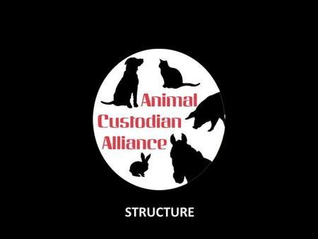 STRUCTURE. Nominate and Approve BOARD members Member Organisations (Sanctuary or Community Custodians) } } …and EMT members } Approve New Member Orgs.