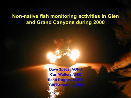 Non-native fish monitoring activities in Glen and Grand Canyons during 2000 Dave Speas, AGFD Carl Walters, UBC Scott Rogers, AGFD Bill Persons, AGFD.