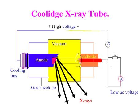Coolidge X-ray Tube. + High voltage - Anode cathode Cooling fins A Vacuum Low ac voltage Gas envelope A X-rays.