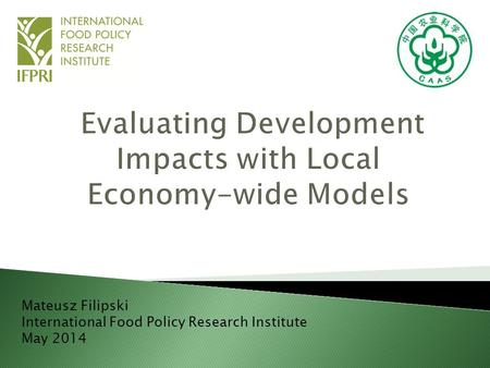Mateusz Filipski International Food Policy Research Institute May 2014.