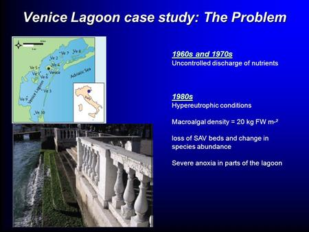 Venice Lagoon case study: The Problem 1960s and 1970s Uncontrolled discharge of nutrients1980s Hypereutrophic conditions Macroalgal density = 20 kg FW.