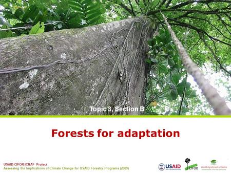 USAID-CIFOR-ICRAF Project Assessing the Implications of Climate Change for USAID Forestry Programs (2009) Forests for adaptation Topic 3, Section B.