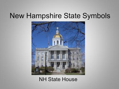 New Hampshire State Symbols NH State House. New Hampshire Flag Can you guess why there are nine stars around the state seal?