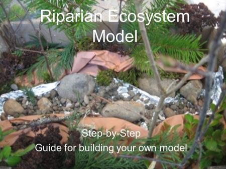 Riparian Ecosystem Model Step-by-Step Guide for building your own model.