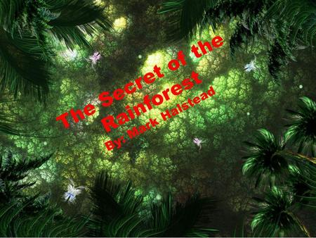 The Secret of the Rainforest By: Mark Halstead.