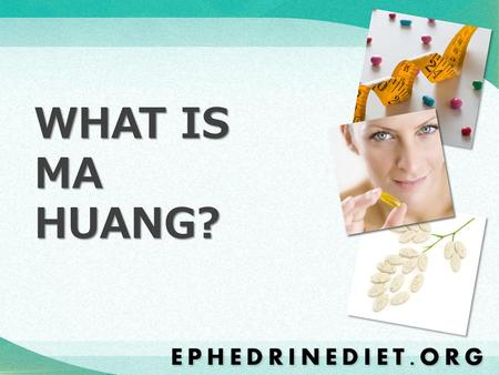 WHAT IS MA HUANG?. The Ma Huang herb, otherwise known as Ephedra Sinica, was originally discovered in China hundreds of years ago. It contains a stimulant.