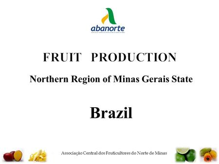  Associação Central dos Fruticultores do Norte de Minas FRUIT PRODUCTION Northern Region of Minas Gerais State Brazil.