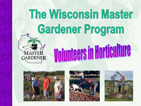 Initial Requirements To become a Master Gardener Volunteer: Turn in a background check form Complete 36 hours of training (i.e. twelve 3-hour sessions.