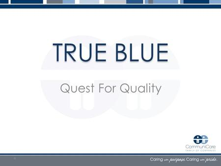 TRUE BLUE Quest For Quality. Data Sanity Matthew S. Wayne MD, CMD Chief Medical Officer.