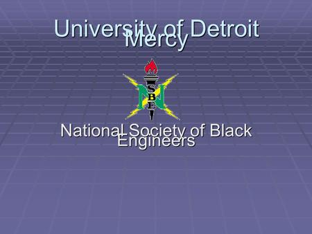 University of Detroit Mercy National Society of Black Engineers.