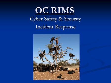 OC RIMS Cyber Safety & Security Incident Response.