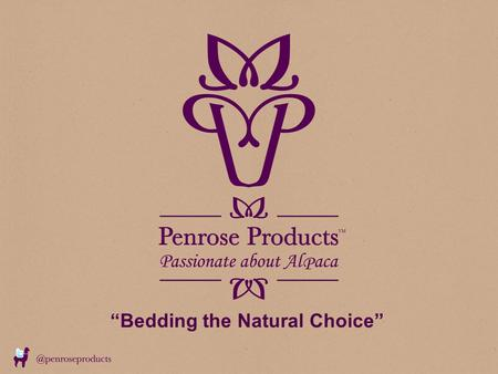 """Bedding the Natural Choice"". Agenda What do we do and what is our background Duvet, Pillow and Mattress Topper Construction & Fabrics Natural Fibres."