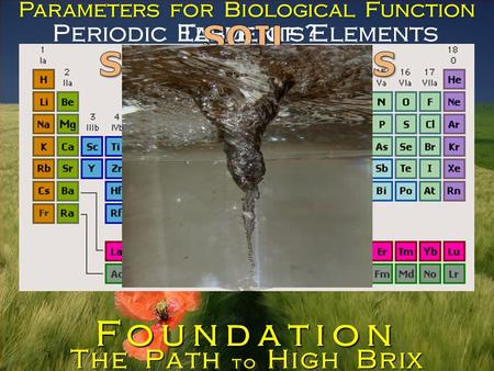 Periodic Table of Elements Elements? The Path to High Brix Foundation Parameters for Biological Function.