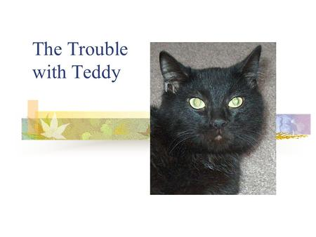 The Trouble with Teddy About Teddy, the Handicat… Ted is neurologically damaged. He is less than one year old. He has been in foster care for 4 months,