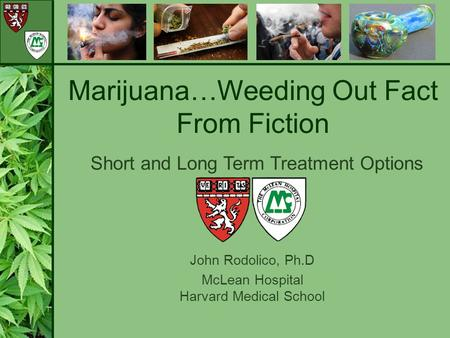 John Rodolico, Ph.D McLean Hospital Harvard Medical School Marijuana…Weeding Out Fact From Fiction Short and Long Term Treatment Options.