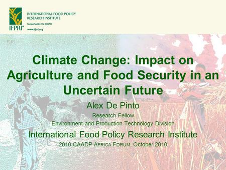Climate Change: Impact on Agriculture and Food Security in an Uncertain Future Alex De Pinto Research Fellow Environment and Production Technology Division.