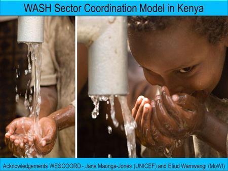 WASH Sector Coordination Model in Kenya