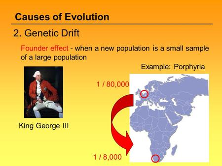 Causes of Evolution 2. Genetic Drift
