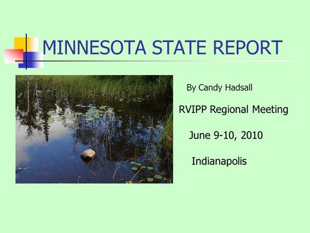 MINNESOTA STATE REPORT RVIPP Regional Meeting Indianapolis By Candy Hadsall June 9-10, 2010.