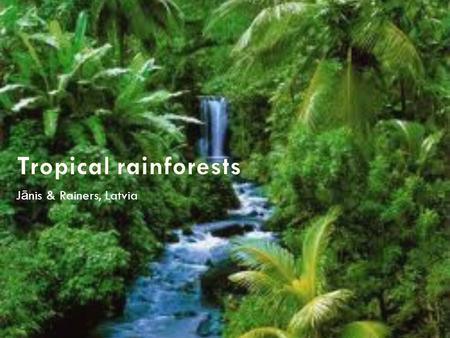 J ā nis & Rainers, Latvia. WHAT ARE RAINFORESTS? Tropical rainforests are characterized in two words: warm and wet. Tropical rainforests are forests with.