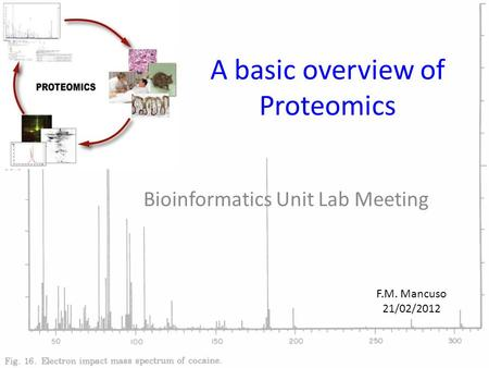 A basic overview of Proteomics Bioinformatics Unit Lab Meeting F.M. Mancuso 21/02/2012.