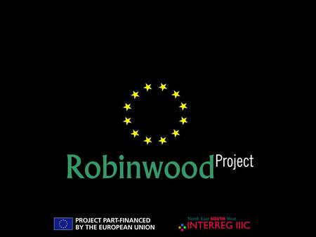 "PIC INTERREG IIIC Sud ""Robinwood"" Mr. Paolo Forno Financial Manager Subprojects Administrative procedures."