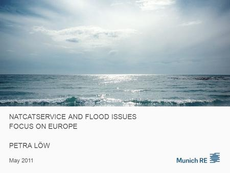 NATCATSERVICE AND FLOOD ISSUES FOCUS ON EUROPE PETRA LÖW May 2011.