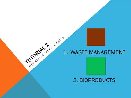 TUTORIAL 1 WORKING GROUPS 1 AND 2 1.WASTE MANAGEMENT 2. BIOPRODUCTS.