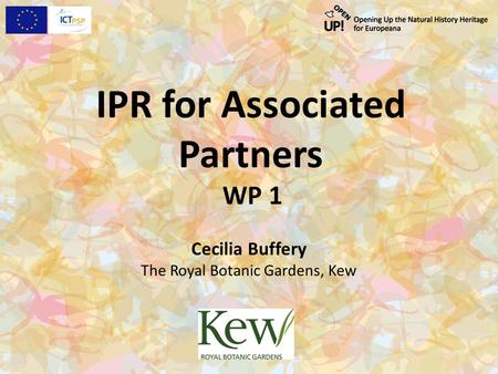 IPR for Associated Partners WP 1 Cecilia Buffery The Royal Botanic Gardens, Kew.