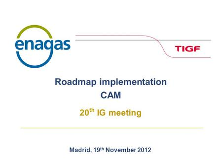 Madrid, 19 th November 2012 Roadmap implementation CAM 20 th IG meeting.