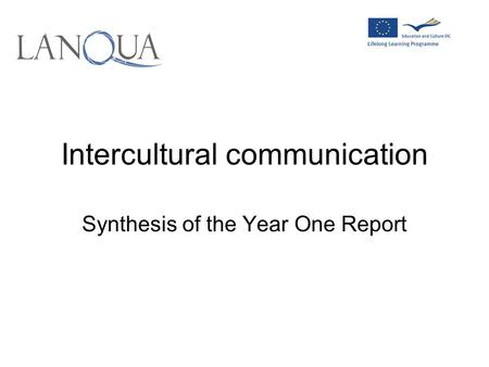 Intercultural communication Synthesis of the Year One Report.