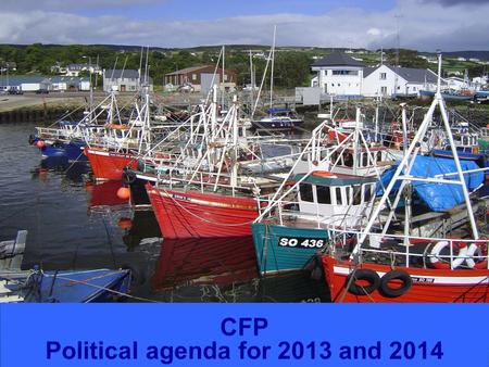 FISHERIES CFP Political agenda for 2013 and 2014.