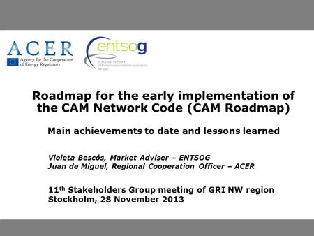 Roadmap for the early implementation of the CAM Network Code (CAM Roadmap) Main achievements to date and lessons learned Violeta Bescós, Market Adviser.