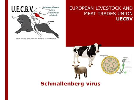 Schmallenberg virus EUROPEAN LIVESTOCK AND MEAT TRADES UNION UECBV.