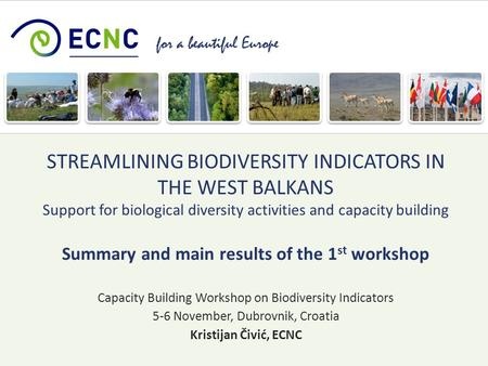 For a beautiful Europe Capacity Building Workshop on Biodiversity Indicators 5-6 November, Dubrovnik, Croatia Kristijan Čivić, ECNC STREAMLINING BIODIVERSITY.