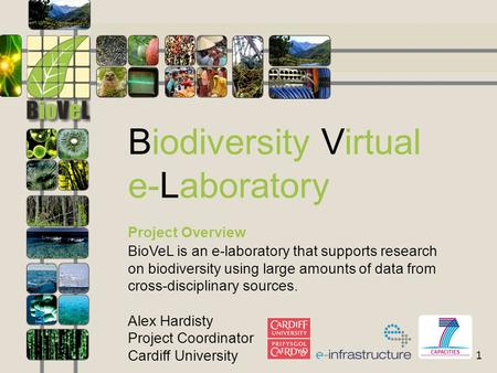 1 Biodiversity Virtual e-Laboratory Project Overview BioVeL is an e-laboratory that supports research on biodiversity using large amounts of data from.