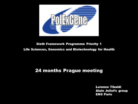 24 months Prague meeting Sixth Framework Programme Priority 1 Life Sciences, Genomics and Biotechnology for Health Lorenzo Tibaldi Alain Joliot's group.