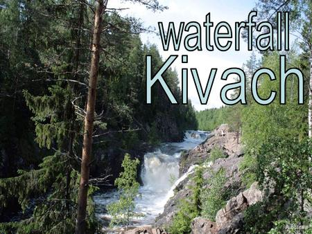 Kivach is probably the most famous waterfall in Russia. It is situated on the Suna River in the Kondopoga District, Republic of Karelia and gives its.